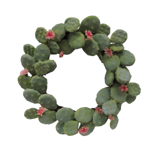 Cactus wreath from JOANN -- perfect Arizona decor!